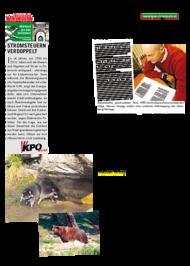 Dateivorschau: volkstimme märz 2011_A_scr 08.pdf