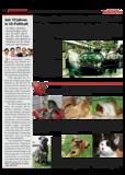 Dateivorschau: VolxstimmeSept08_scr_19.pdf