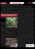 Dateivorschau: Volxstimme_Dez_07_scrOst12.pdf