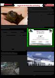Dateivorschau: Volxstimme_juli08_weiz1.pdf
