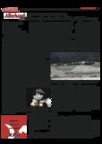 Dateivorschau: volxstimme_02_06_scr_12.pdf