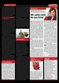 Dateivorschau: volxstimme_okt09_scr_3.pdf