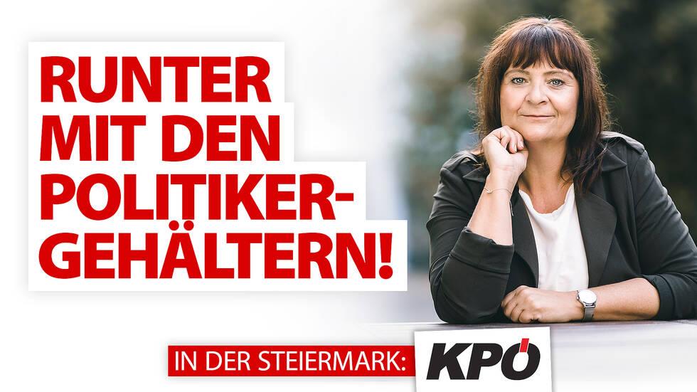 Banner_Runter-mit-den-Politikergehältern.jpg