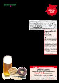 Dateivorschau: volkstimme nov 2011_scr Seite 15.pdf