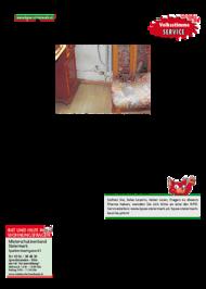 Dateivorschau: volkstimme märz 2011_A_scr 15.pdf