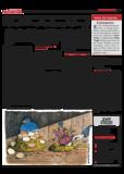 Dateivorschau: Volxstimme_Dez_07_scr_20.pdf