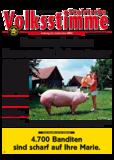 Dateivorschau: volksstimme_juni_screen.pdf