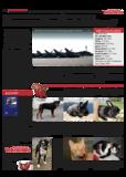 Dateivorschau: Volxstimme_juli08_scr_21.pdf