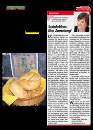 Dateivorschau: volkstimme märz 2011_A_scr 03.pdf
