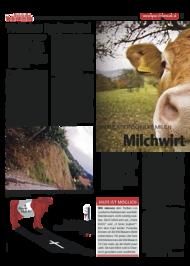 Dateivorschau: volxstimme_okt09_scr_16.pdf