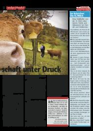 Dateivorschau: volxstimme_okt09_scr_17.pdf